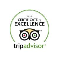 TA 2016 Excellence logo